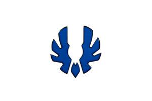 Bitfenix Logo PC