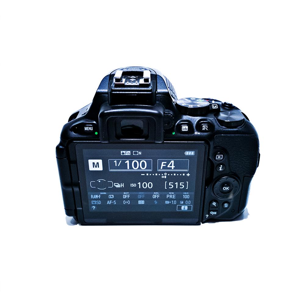 Nikon D5500 Monitor